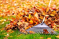 Six Safety Tips for Raking Leaves