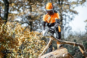 15 Tips for Safer Chainsaw Use