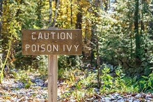 Poisonous Plant Awareness